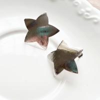 Užsegimai vinukai, žvaigždės, sid., sp., 22,5mm, 1 pora