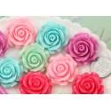 Kabošonai gėlytės